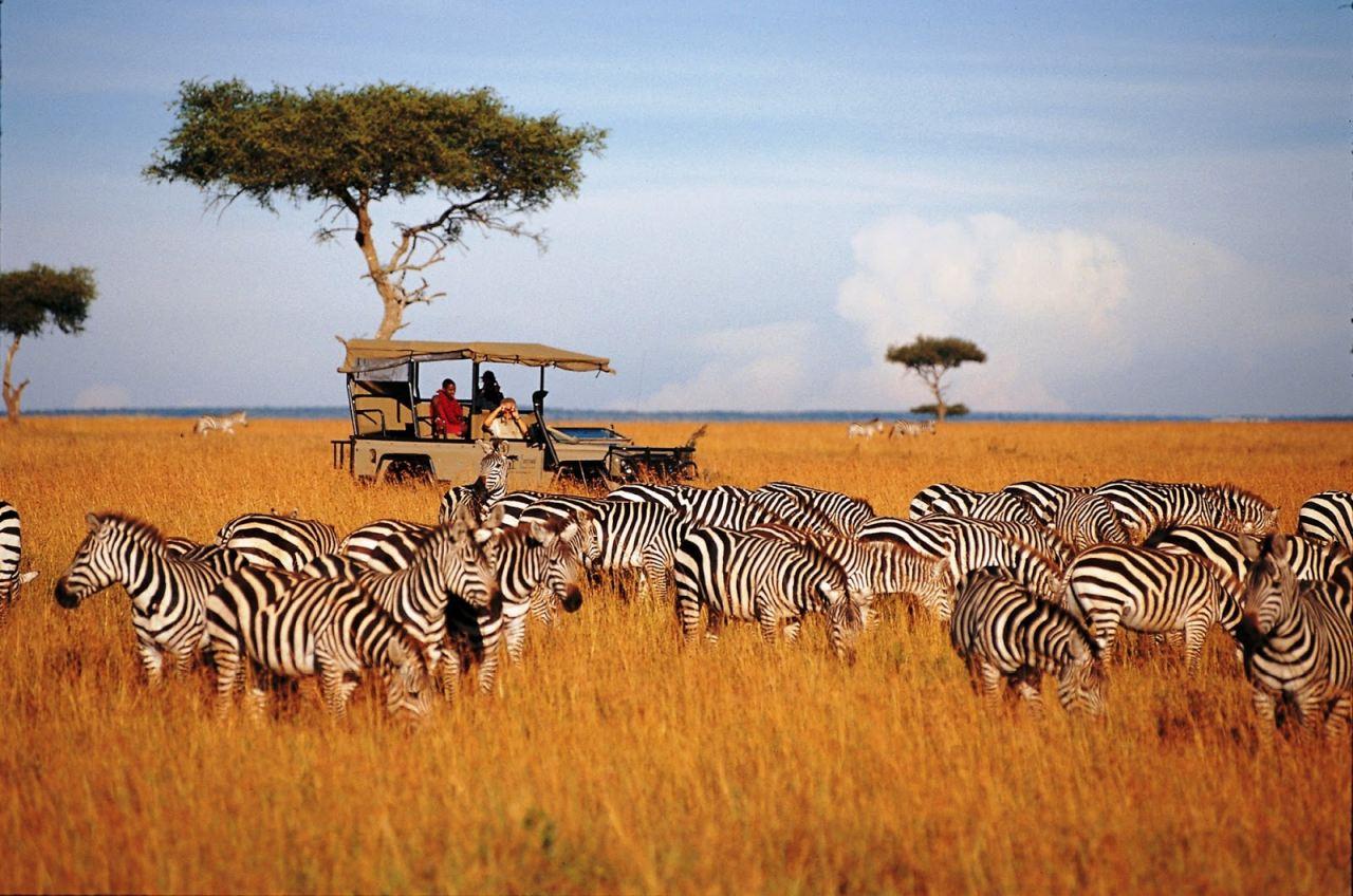 Winter safari in Kenya